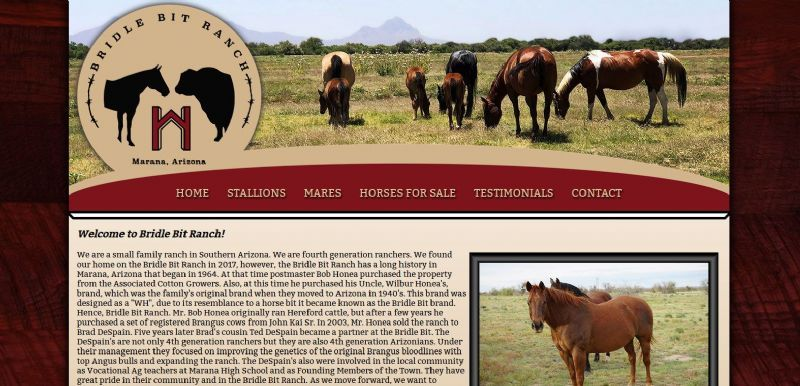 Bridle Bit Ranch