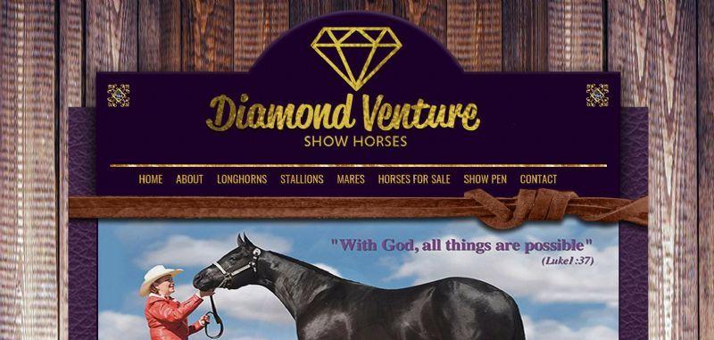 Diamond Venture Show Horses