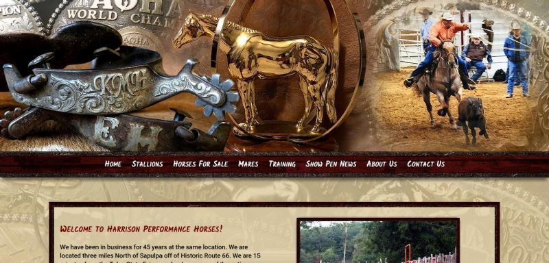 Harrison Performance Horses