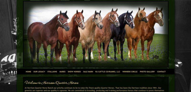 Harrison Quarter Horses
