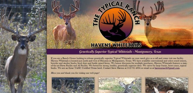 Havens Whitetails