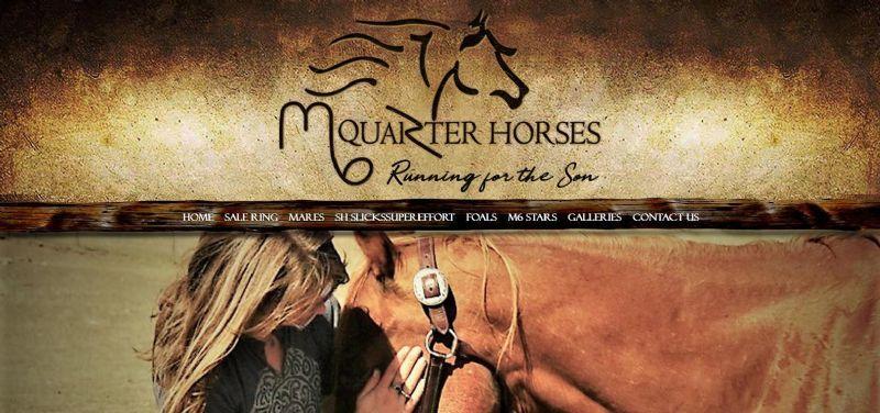 M6 Quarter Horses