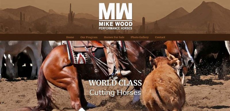 Mike Wood Performance Horses
