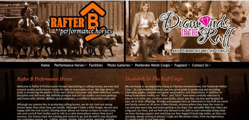 Rafter B Performance Horses / Diamonds In The Ruff Corgis