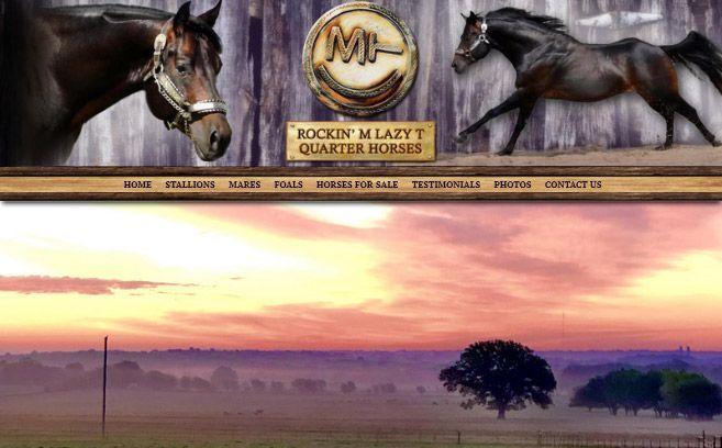 Rockin' M Lazy T Quarter Horses