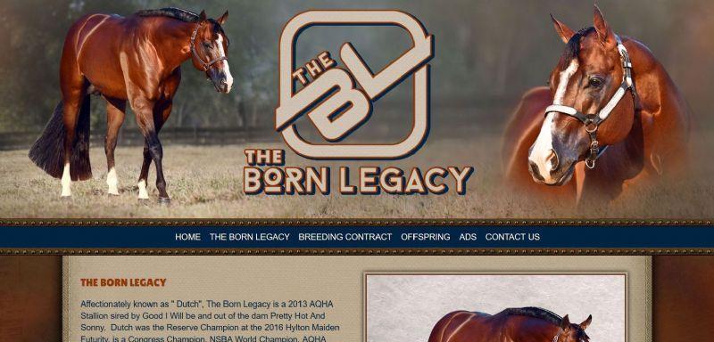 The Born Legacy