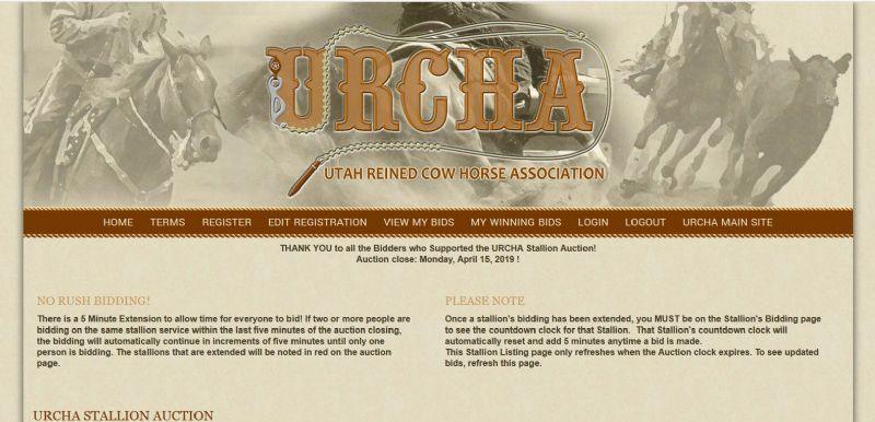 Portfolio - Websites for Equine, Ranch, Farm, All Small Business