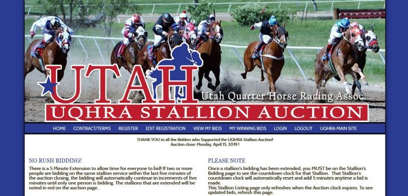 UQHRA Stallion Auction
